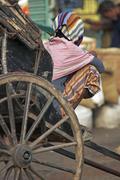 Rickshaw wallah having a rest Stock Photos