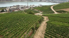 Aerial view over vineyards in Rudesheim Stock Footage