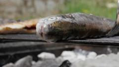 Trout fish on barbecue close-up slow grilling   4K 2160p UltraHD footage - Sl Stock Footage