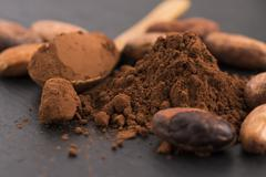 Cacao beans and cacao powder in spoon Stock Photos