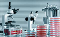 Workbench in microbiological laboratory Stock Photos