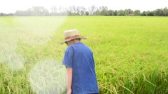 Young Asian boy in thai traditional blue shirt and straw hat Stock Footage