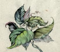 The leaves on paper Stock Illustration