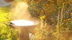 Water misting mist bird bath garden Stock Footage