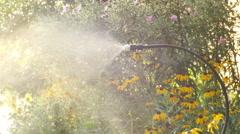 Water misting mist device garden Stock Footage