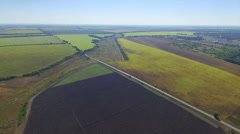Aerial view of green fields - stock footage