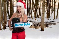 Beautiful woman elf Stock Photos