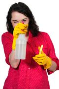 Woman Cleaning House Stock Photos