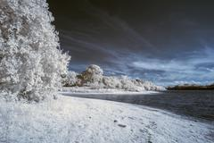 Stock Photo of Infrared landscape of lake in English countryside in Summer with surreal colo