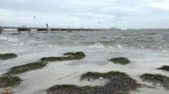 Storm Waves Crashing On Sidewalk Tampa Bay - stock footage