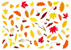 Stock Illustration of Autumnal leaves, herbs, acorns and berries