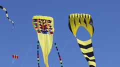 Large Kites Dancing in the Sky - stock footage