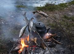 Fishing break, tea time with fish nature roast on fire Stock Photos