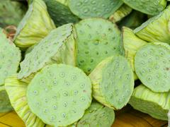 Bunch of waterlily pod Stock Photos