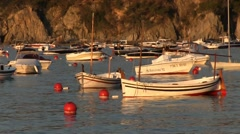 Boats in harber Calella Stock Footage