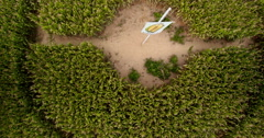 ascending aerial from the middle of teddy bear corn maze - stock footage