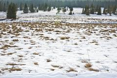view to winter landsape at nort Bohemia Krusne Hory, Bublava, Rolava - stock photo