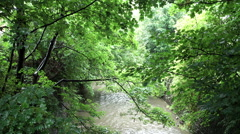 River Rea in Canon Hill Park, Birmingham. Stock Footage