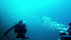 Scuba Diving in Slow Motion - stock footage