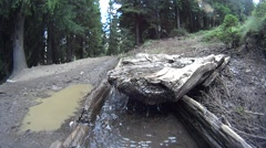 Water flowing from the source (spring) Stock Footage
