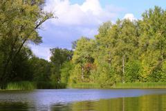 Summer flood - stock photo