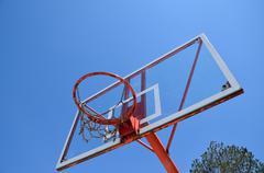 Basketball hoop and tree - stock photo