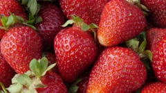 Fragaria  ananassa  arranged on table tasty red dessert background 4K 2160p U Stock Footage