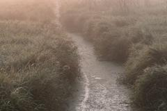 Drainage Ditch and Fog - stock photo