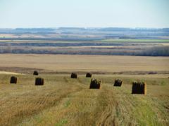 Agriculture Altaya Stock Photos