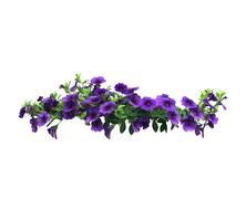 Petunia flowers hanging basket Stock Photos