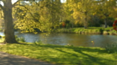 Stock Video Footage of Lovely view of the river and its riverbank