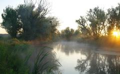 Morning landscape with fog on the river Stock Photos