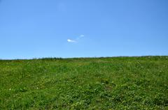 Land horizon - green meadow and blue sky - stock photo