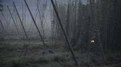Hop harvest, tractor carrying hops to harvester Stock Footage