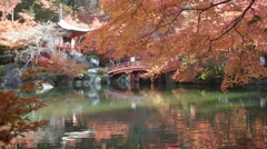 Time lapse of autumn season,The leave change color of red, Temple, Japan Stock Footage