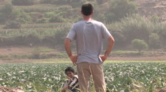 Peruvian Agricultural Land Stock Footage