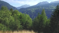 Flight over  a forest in a valley in Swizerland Stock Footage