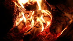Camp fire in the night Stock Footage