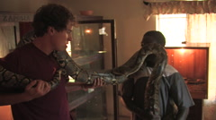 Boa Constrictor Kitwe, Zambia - stock footage