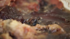 simmering meat in a bowl - stock footage