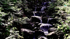 View of little river Stock Footage