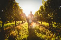 Happy couple playing with a wheelbarrow between grapevine Stock Photos