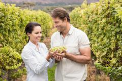 Smiling couple holding a bunch of green grape Stock Photos