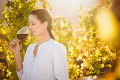 Pretty brunette smelling the arome red wine - stock photo