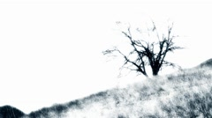 SPOOKY TREE ON A HILLSIDE Stock Footage