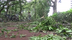 Bike Lane Damage After Tropical Storm Hits Taiwan, Typhoon Soudelor 4K-Dan Stock Footage