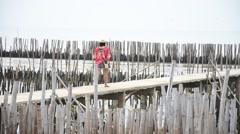 Thai women walking alone on the walkway bridge in Mangrove forest Stock Footage