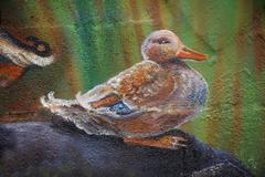 single wild duck male standing on a rock, acrylic painting on a wall - stock illustration