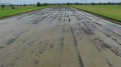 Aerial view of rice field ready for transplanting Stock Footage