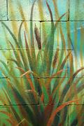 Bunch of wild cane reed painted on a wall Stock Illustration
